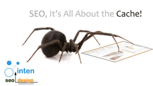 [تصویر:  seo-spiders-cache.jpg]