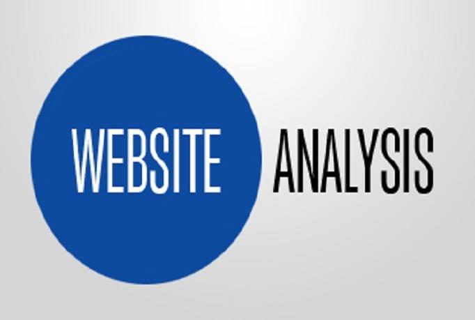 analyze website