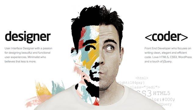 web designer versus web developer