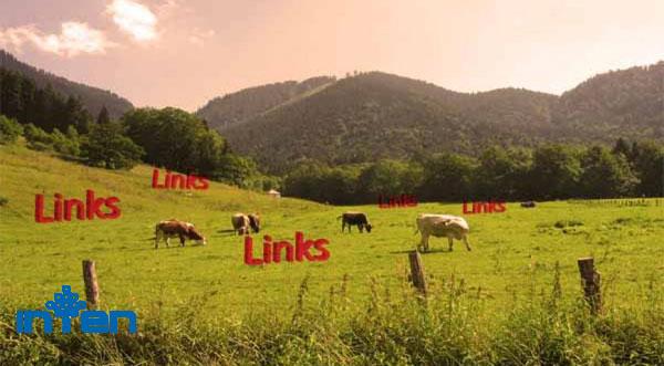 مزرعه لینک چیست؟